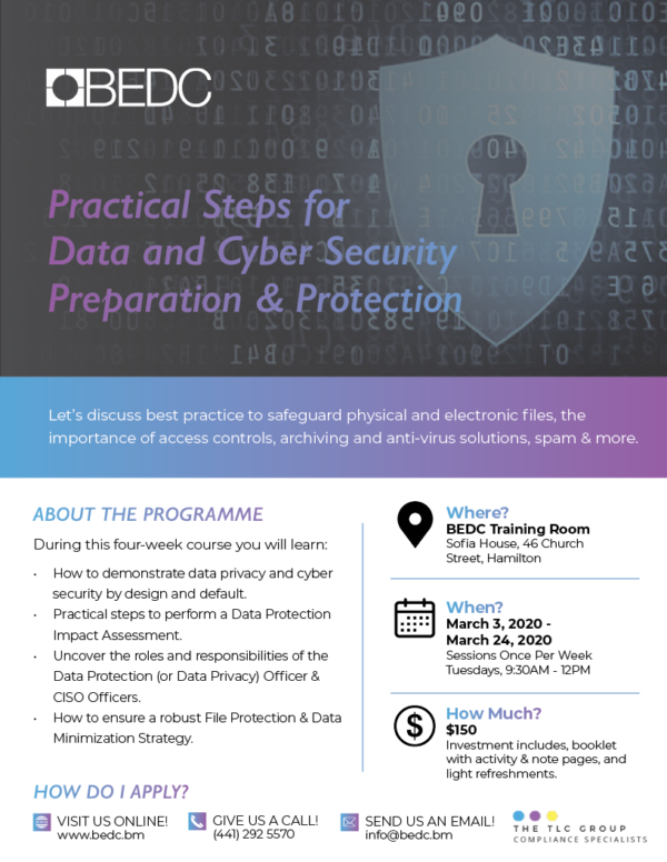 Practical Steps for Data and Cyber Security Preparation & Protection